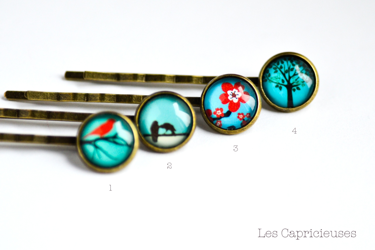 barrette cheveux illustration